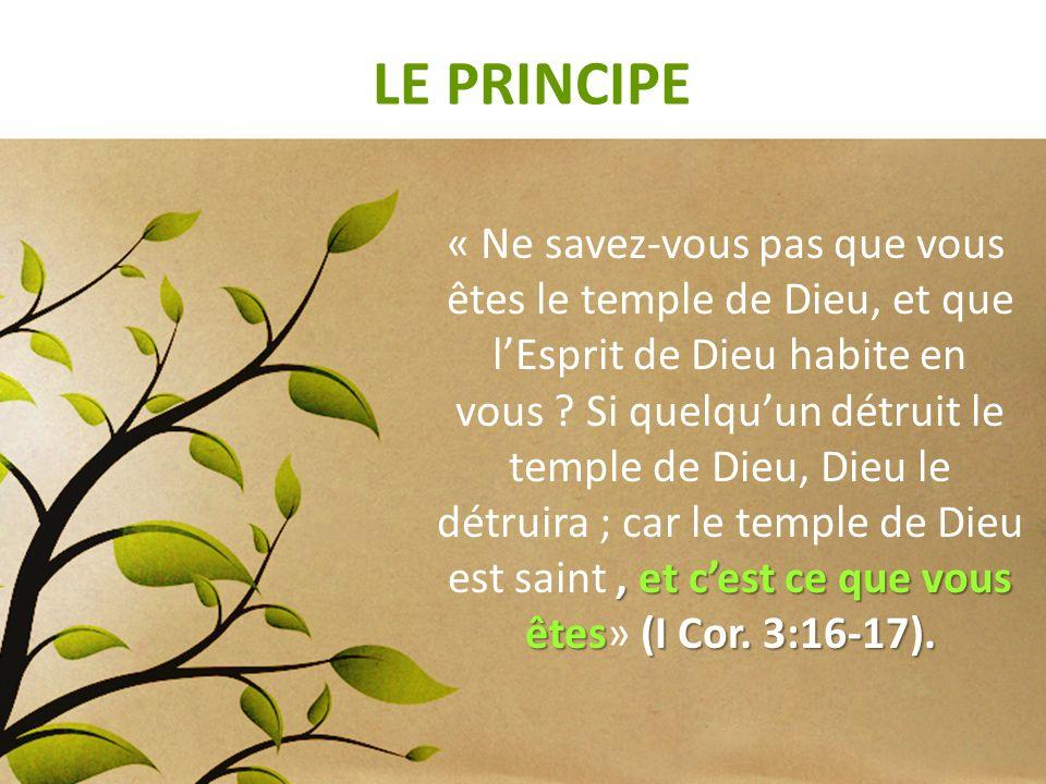 LE PRINCIPE, et cest ce que vous êtes (I Cor. 3:16-17). « Ne savez-vous pas que vous êtes le temple de Dieu, et que lEsprit de Dieu habite en vous ? S