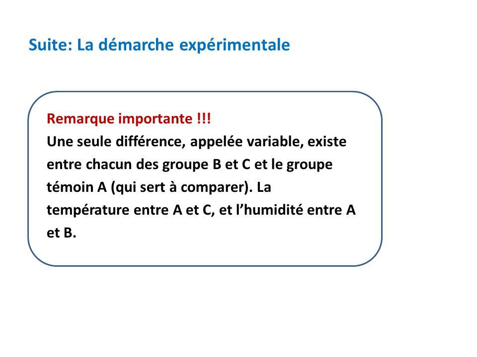 Suite: La démarche expérimentale Remarque importante !!.