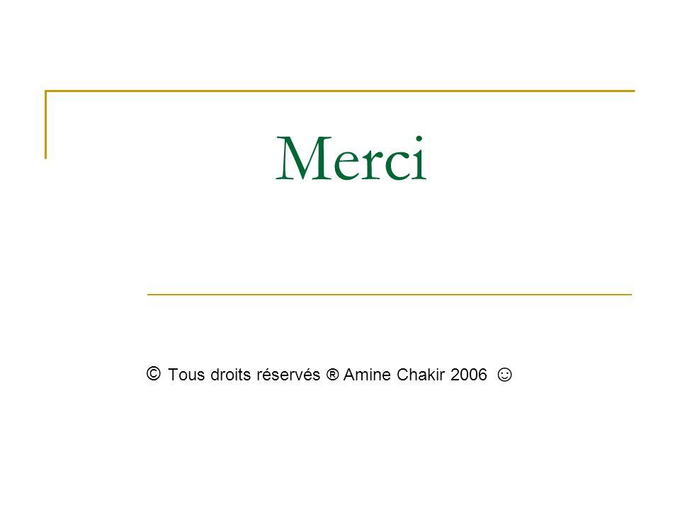 Merci © Tous droits réservés ® Amine Chakir 2006