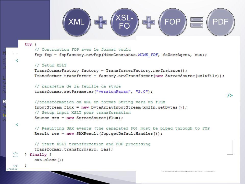 XML XSL- FO FOPPDF Handicaps Lentreprise Organisation du travail Les besoins Les solutions Solutions retenues Choix technologiques Base de données Réa