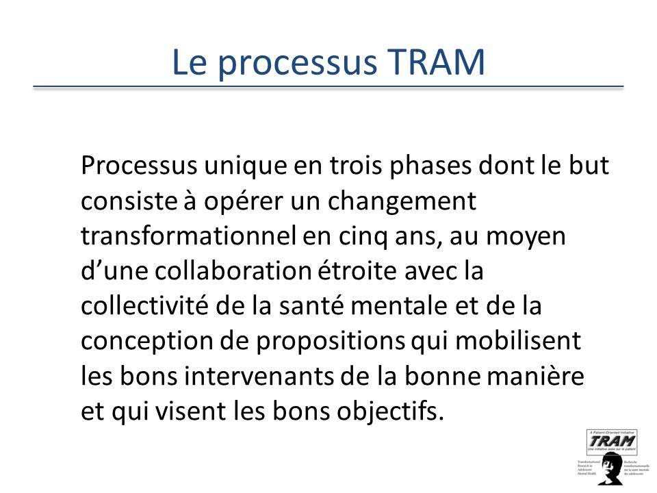 Le processus TRAM Processus unique en trois phases dont le but consiste à opérer un changement transformationnel en cinq ans, au moyen dune collaboration étroite avec la collectivité de la santé mentale et de la conception de propositions qui mobilisent les bons intervenants de la bonne manière et qui visent les bons objectifs.