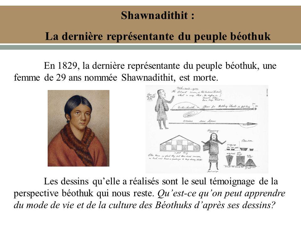 Shawnadithit : La dernière représentante du peuple béothuk En 1829, la dernière représentante du peuple béothuk, une femme de 29 ans nommée Shawnadithit, est morte.