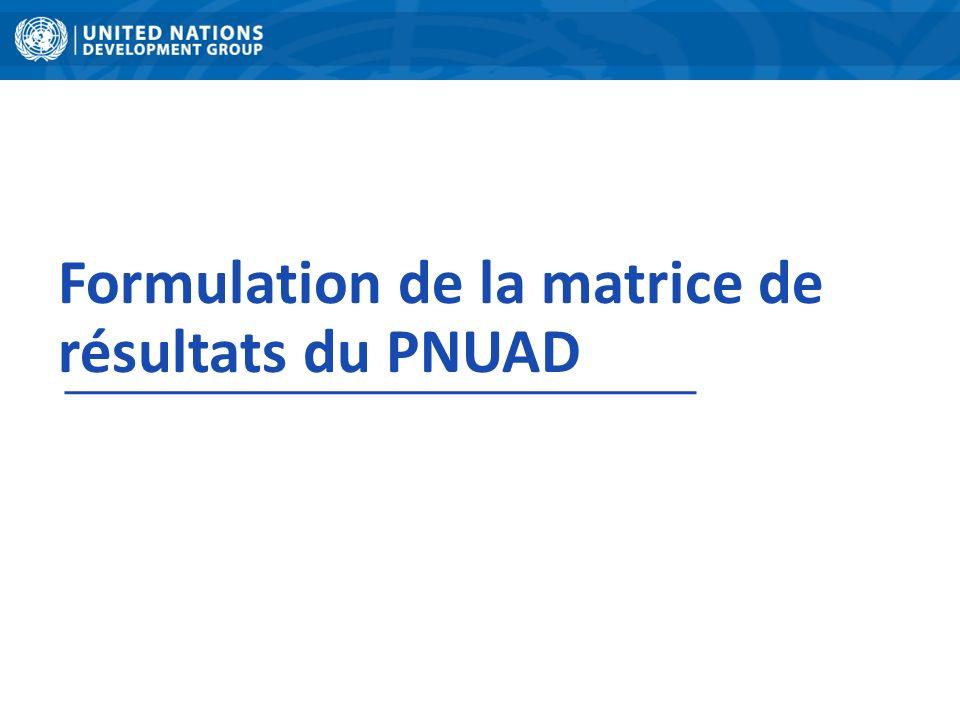 Formulation de la matrice de résultats du PNUAD