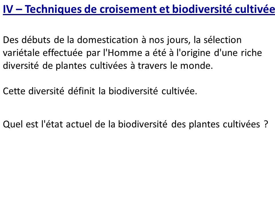 IV – Techniques de croisement et biodiversité cultivée Des débuts de la domestication à nos jours, la sélection variétale effectuée par l Homme a été à l origine d une riche diversité de plantes cultivées à travers le monde.