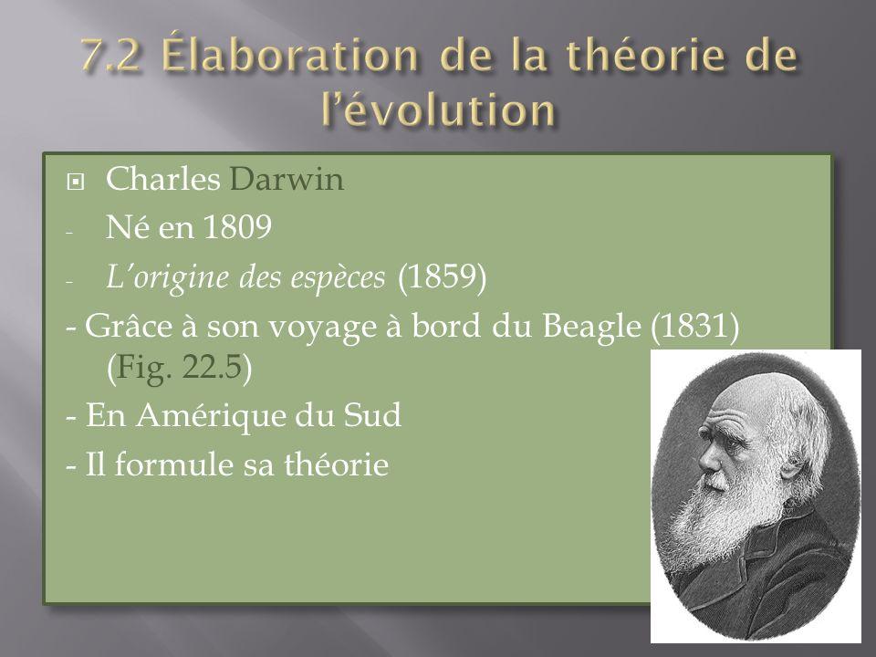 Charles Darwin - Né en 1809 - Lorigine des espèces (1859) - Grâce à son voyage à bord du Beagle (1831) (Fig. 22.5) - En Amérique du Sud - Il formule s