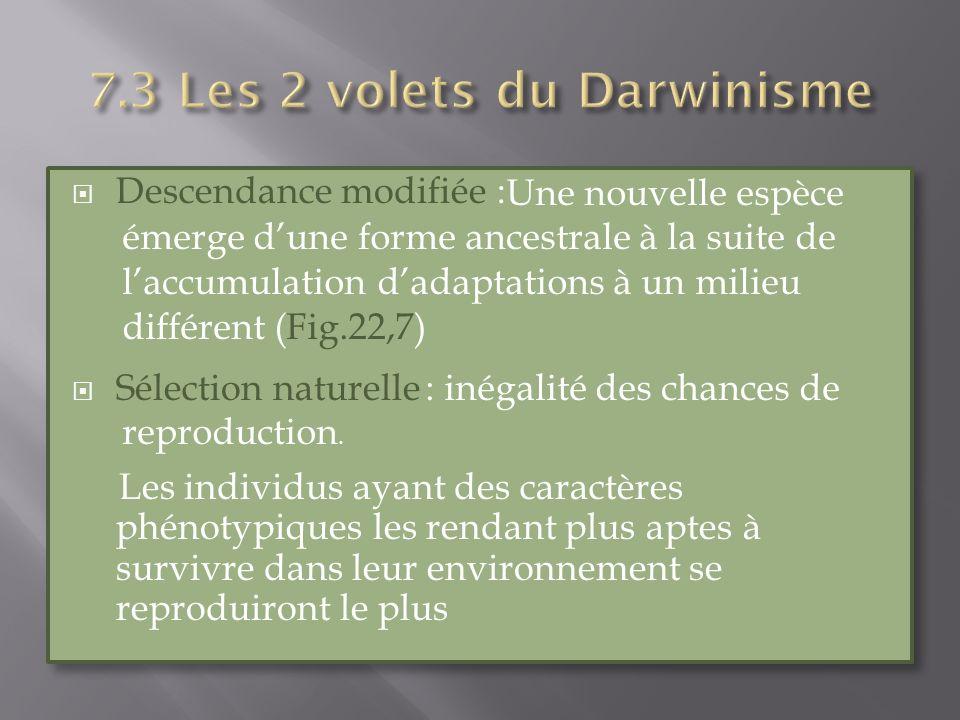 Descendance modifiée : Sélection naturelle Les individus ayant des caractères phénotypiques les rendant plus aptes à survivre dans leur environnement