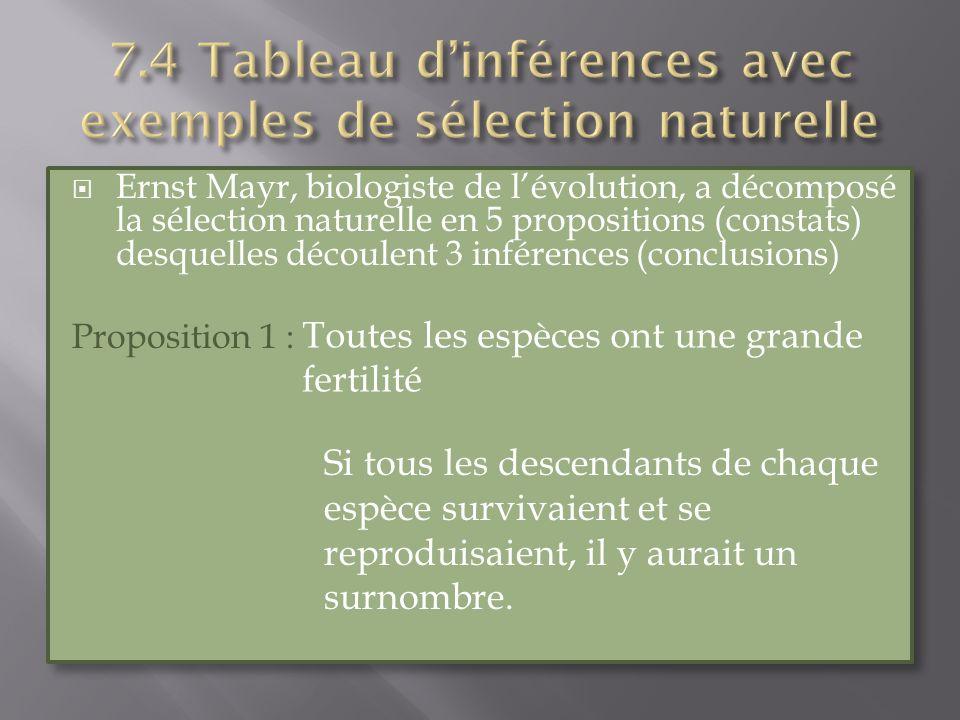 Ernst Mayr, biologiste de lévolution, a décomposé la sélection naturelle en 5 propositions (constats) desquelles découlent 3 inférences (conclusions)
