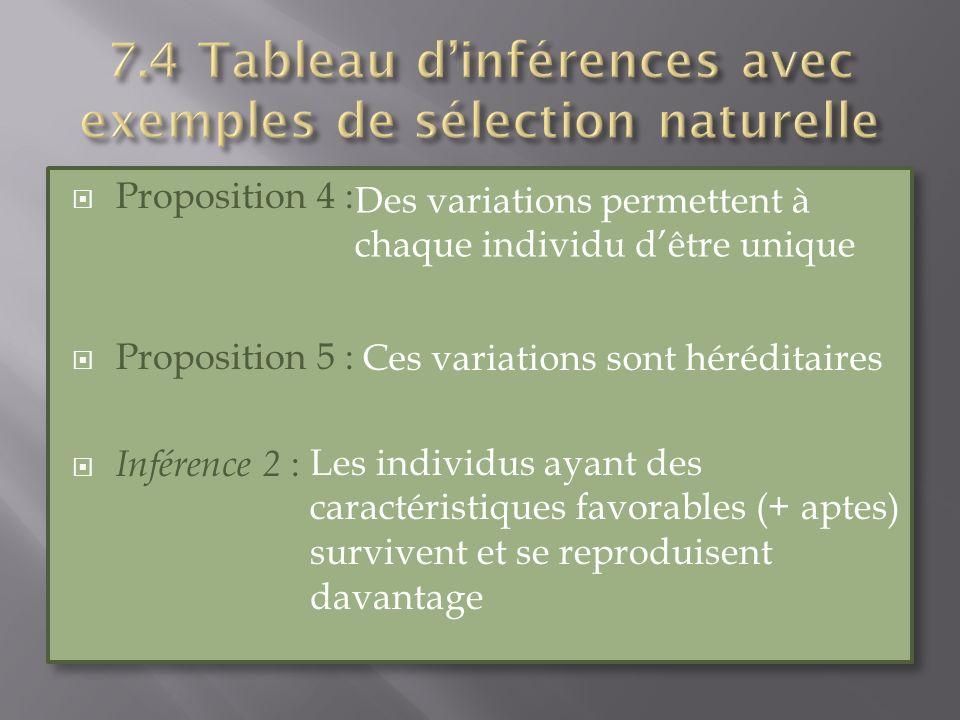 Proposition 4 : Proposition 5 : Inférence 2 : Proposition 4 : Proposition 5 : Inférence 2 : Des variations permettent à chaque individu dêtre unique C