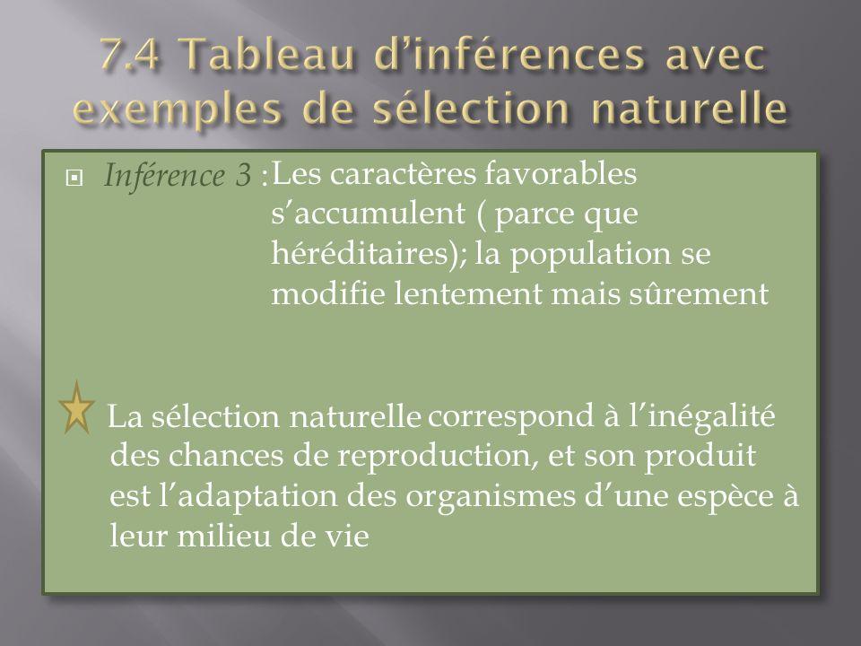 Inférence 3 : La sélection naturelle Inférence 3 : La sélection naturelle Les caractères favorables saccumulent ( parce que héréditaires); la populati