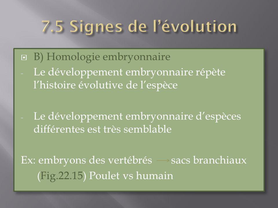 B) Homologie embryonnaire - Le développement embryonnaire répète lhistoire évolutive de lespèce - Le développement embryonnaire despèces différentes e