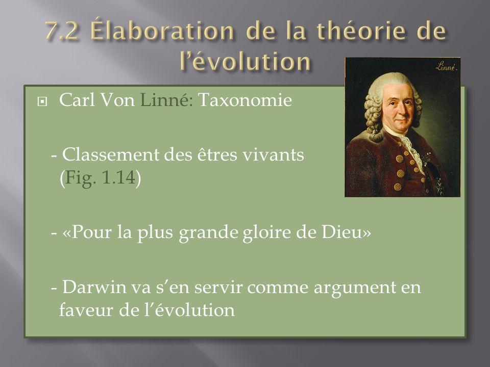 Carl Von Linné: Taxonomie - Classement des êtres vivants (Fig. 1.14) - «Pour la plus grande gloire de Dieu» - Darwin va sen servir comme argument en f