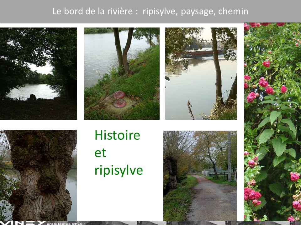 Histoire et ripisylve Le bord de la rivière : ripisylve, paysage, chemin