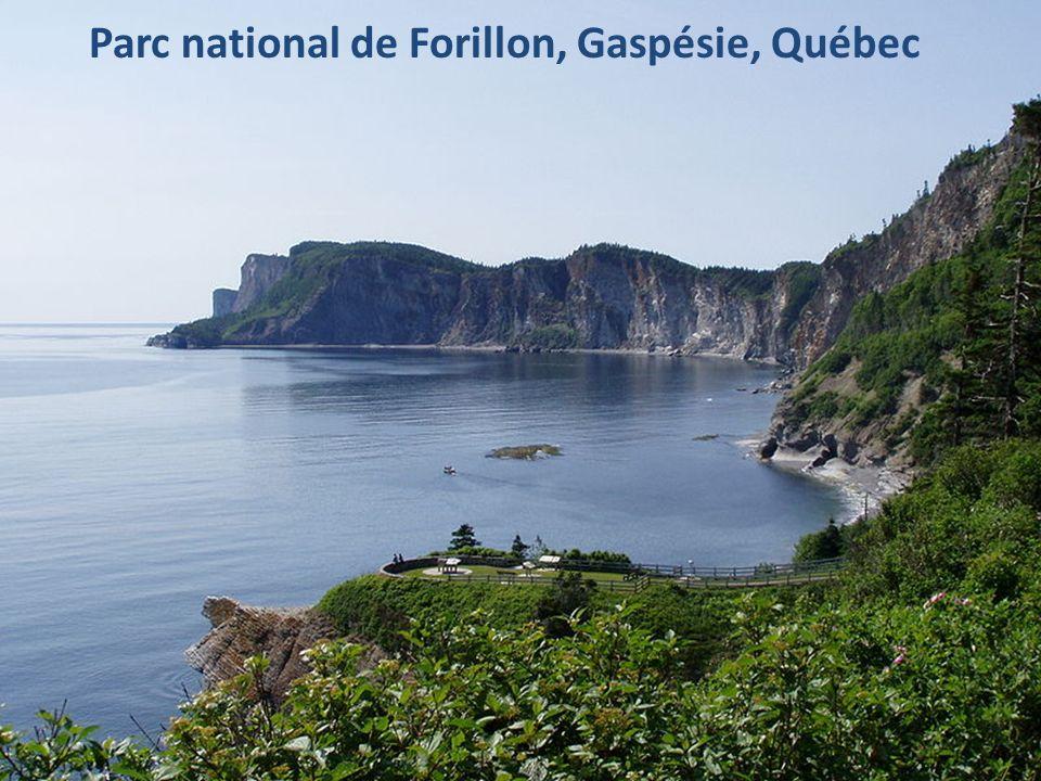 Parc national de Forillon, Gaspésie, Québec