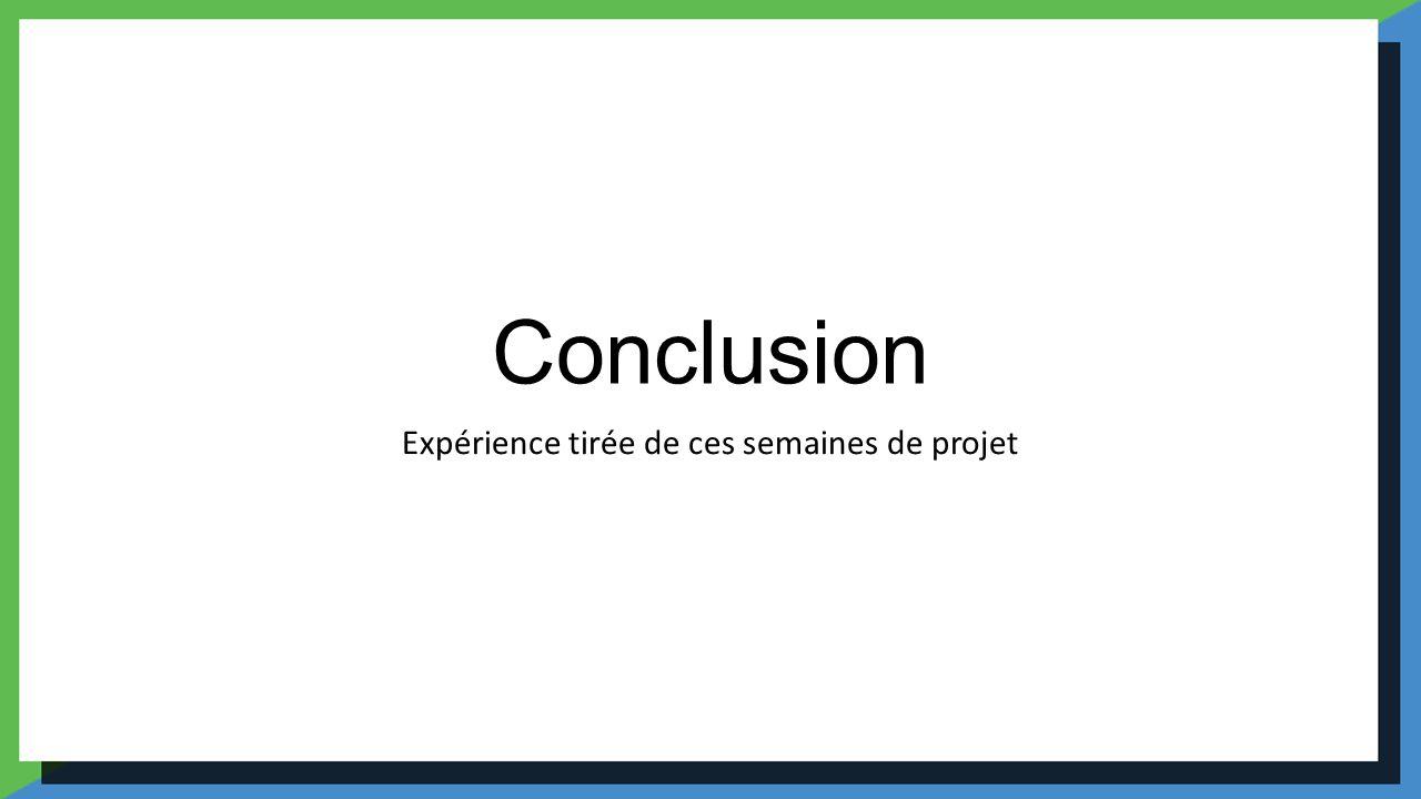 Conclusion Expérience tirée de ces semaines de projet