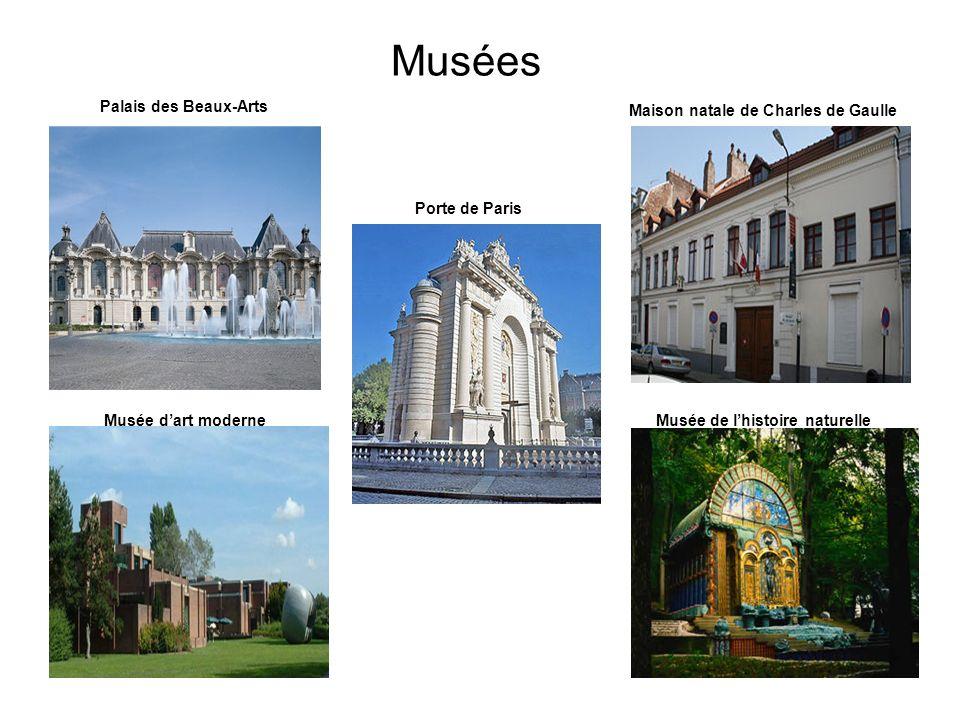 Musées Palais des Beaux-Arts Maison natale de Charles de Gaulle Musée dart moderneMusée de lhistoire naturelle Porte de Paris