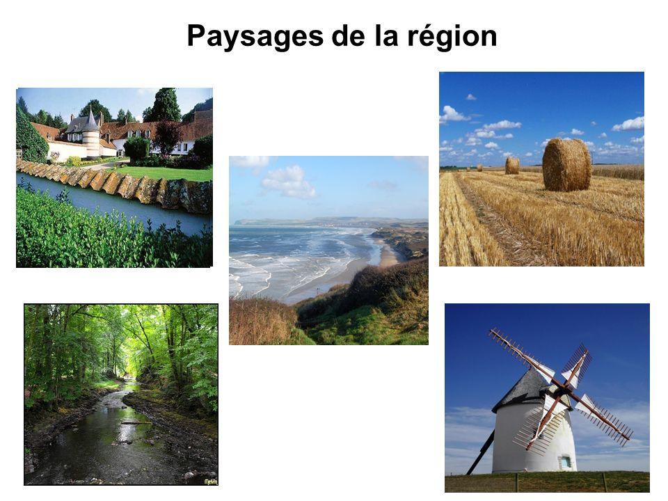 Paysages de la région