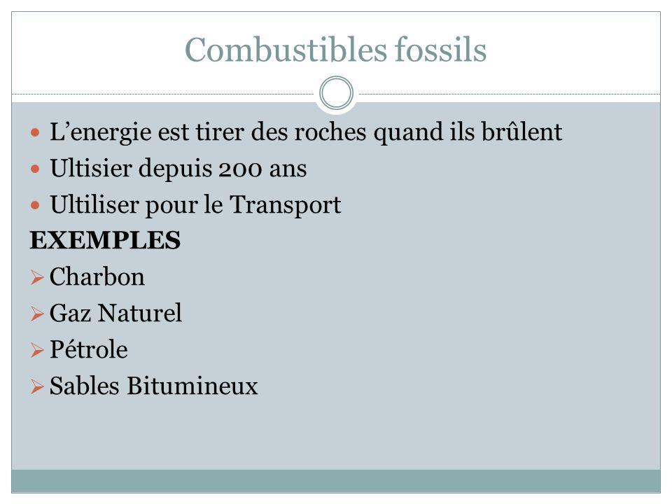 TYPES DE MINÉRAUX Les trois types: Combustibles fossils Minéraux Metalliques Minéraux Industriels