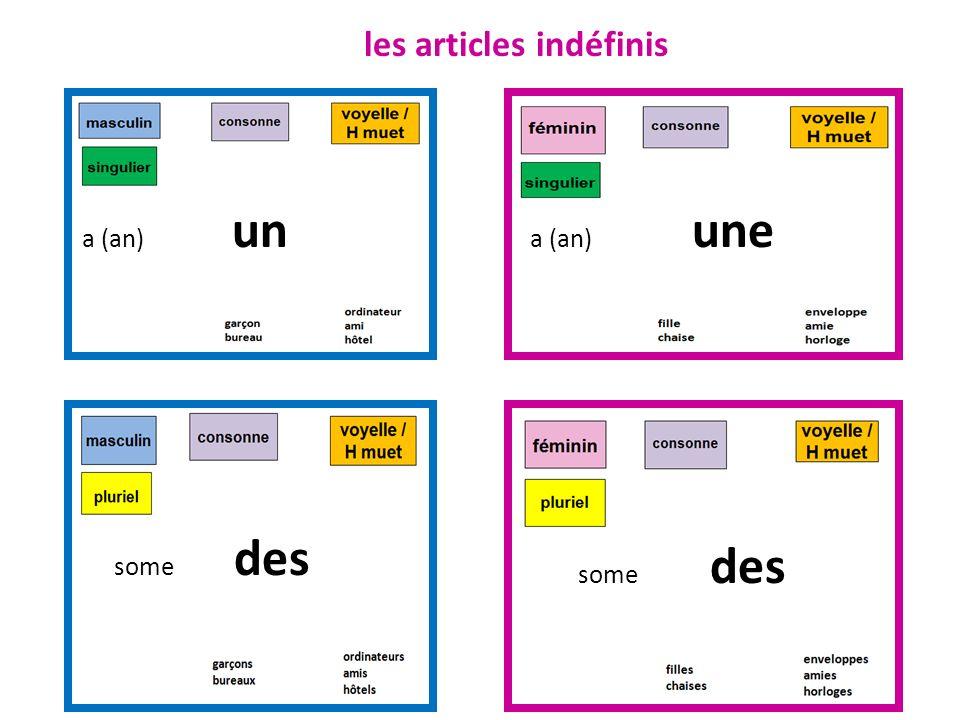a (an) un a (an) une some des les articles indéfinis
