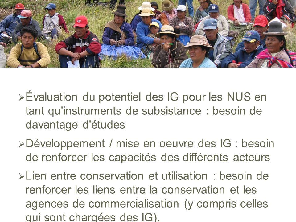 Évaluation du potentiel des IG pour les NUS en tant qu'instruments de subsistance : besoin de davantage d'études Développement / mise en oeuvre des IG