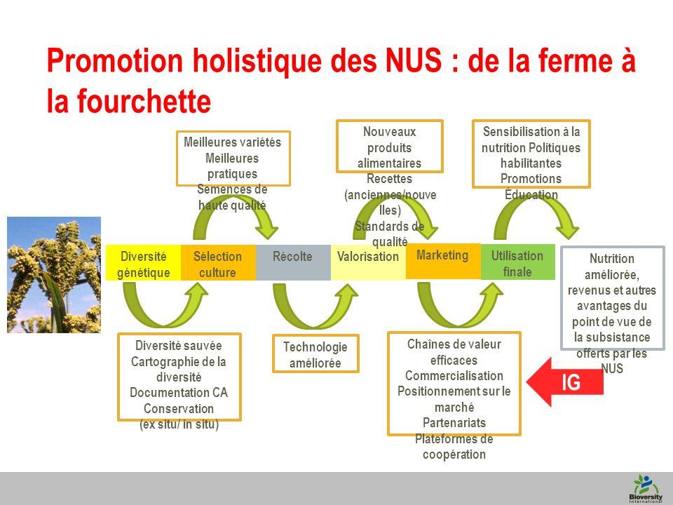 6 Nutrition améliorée, revenus et autres avantages du point de vue de la subsistance offerts par les NUS Promotion holistique des NUS : de la ferme à