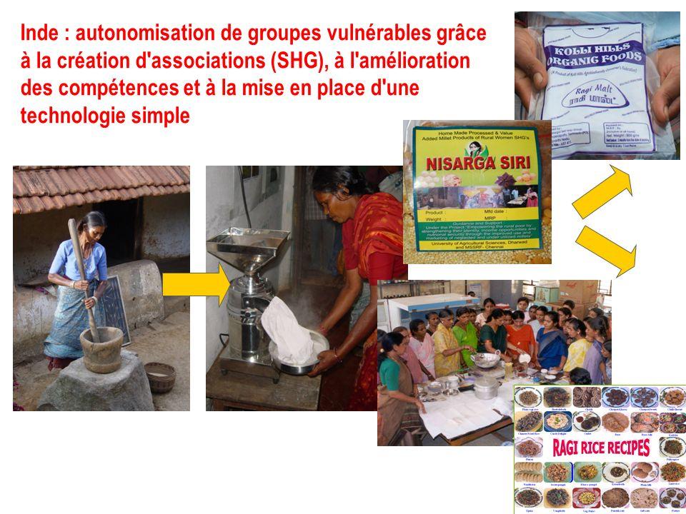 Inde : autonomisation de groupes vulnérables grâce à la création d associations (SHG), à l amélioration des compétences et à la mise en place d une technologie simple