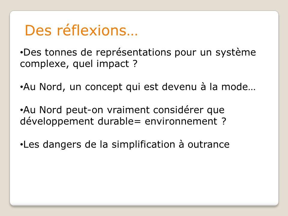 Des réflexions… Des tonnes de représentations pour un système complexe, quel impact .