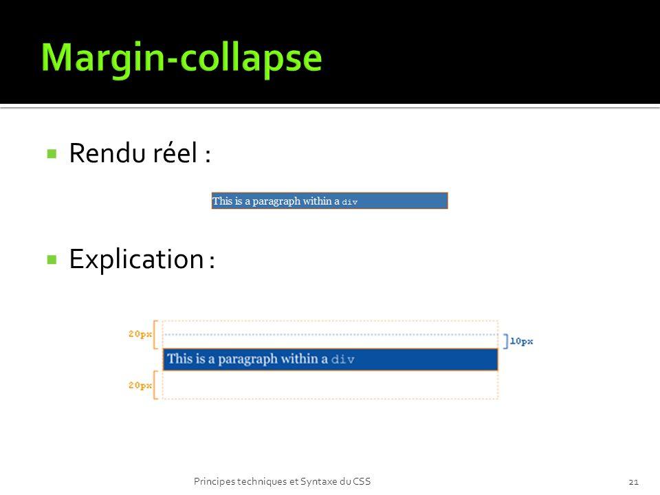 Rendu réel : Explication : Principes techniques et Syntaxe du CSS21