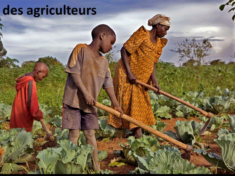 Des agriculteurs des agriculteurs