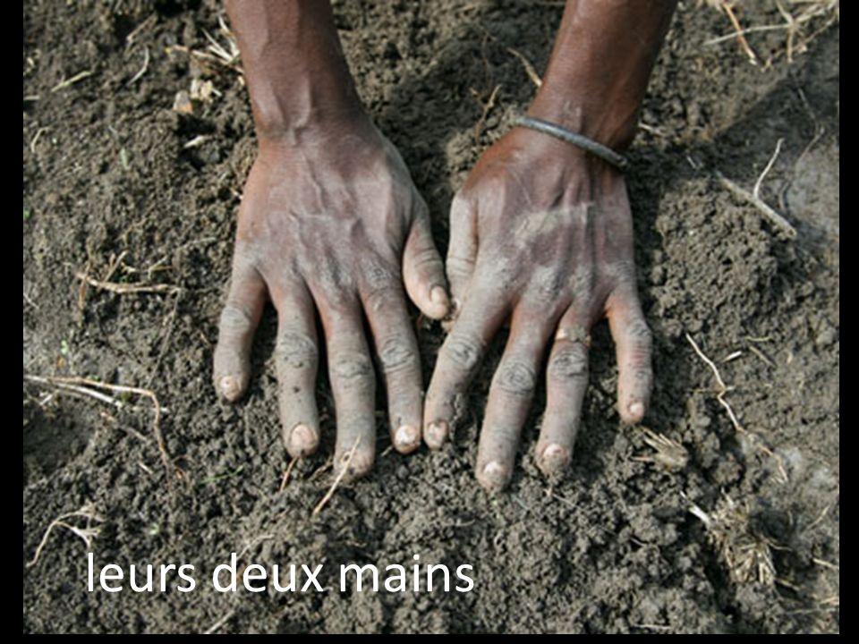 leurs deux mains