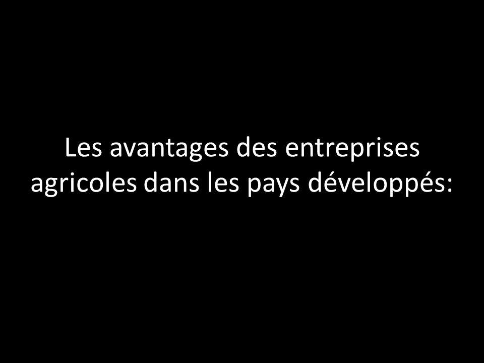 Les avantages des entreprises agricoles dans les pays développés:
