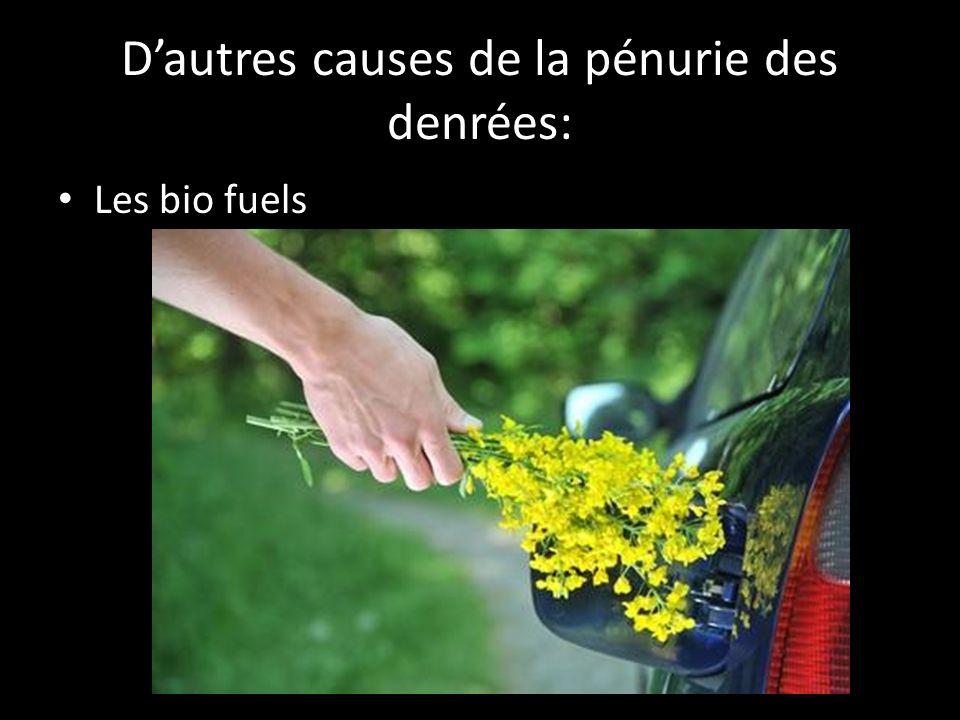 Dautres causes de la pénurie des denrées: Les bio fuels