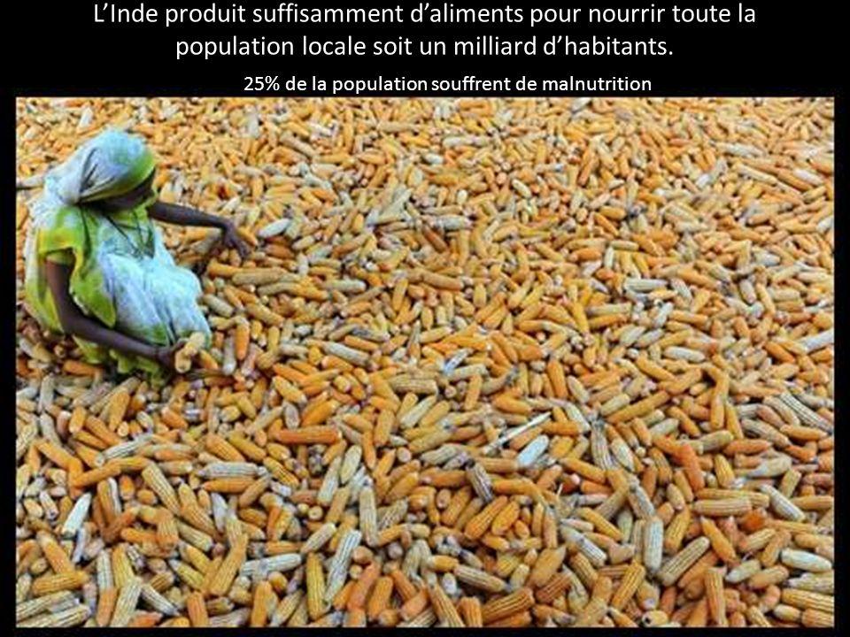 LInde produit suffisamment daliments pour nourrir toute la population locale soit un milliard dhabitants. 25% de la population souffrent de malnutriti