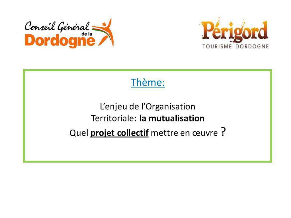 Thème: Lenjeu de lOrganisation Territoriale: la mutualisation Quel projet collectif mettre en œuvre ?
