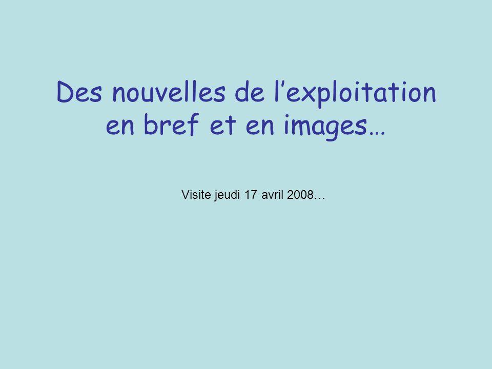 Des nouvelles de lexploitation en bref et en images… Visite jeudi 17 avril 2008…