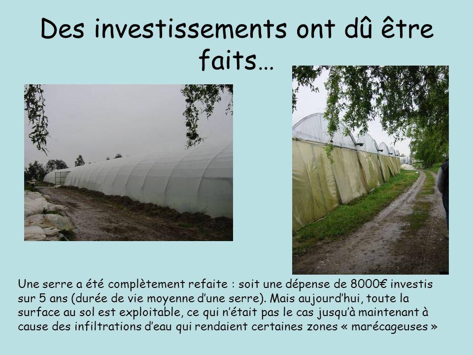 Des investissements ont dû être faits… Une serre a été complètement refaite : soit une dépense de 8000 investis sur 5 ans (durée de vie moyenne dune serre).