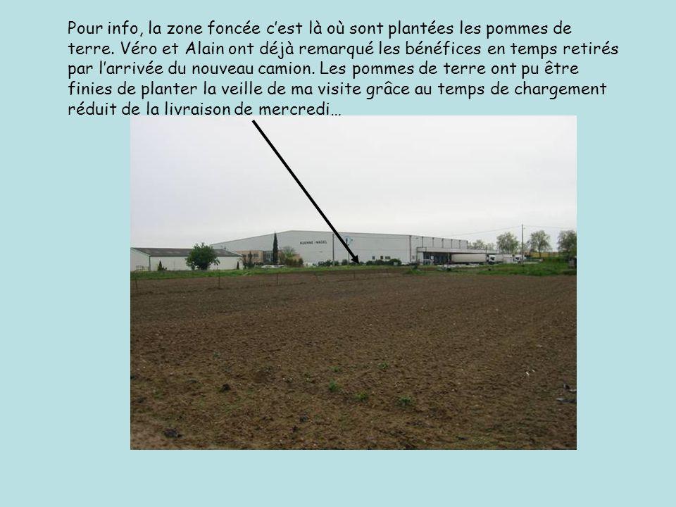 Pour info, la zone foncée cest là où sont plantées les pommes de terre.