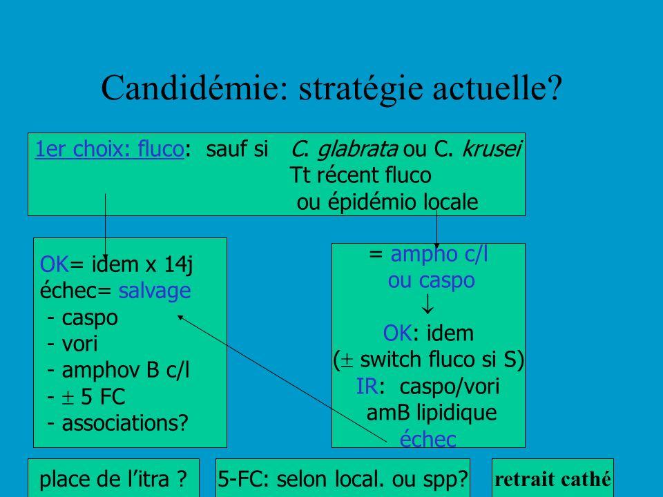 Candidémie: stratégie actuelle? 1er choix: fluco: sauf si C. glabrata ou C. krusei Tt récent fluco ou épidémio locale = ampho c/l ou caspo OK: idem (