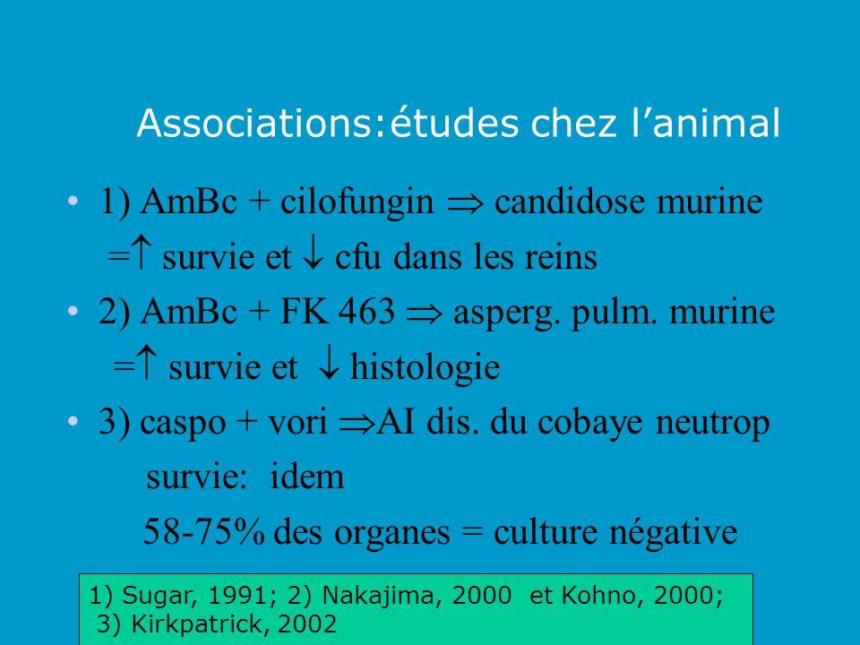 Associations:études chez lanimal 1) AmBc + cilofungin candidose murine = survie et cfu dans les reins 2) AmBc + FK 463 asperg. pulm. murine = survie e