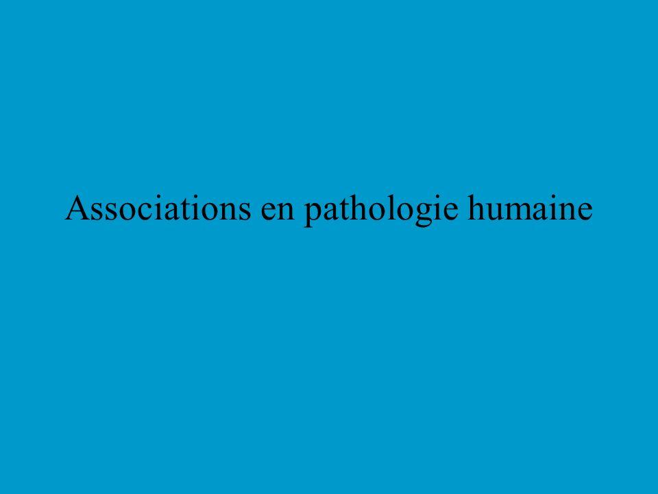 Associations en pathologie humaine