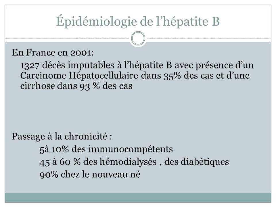 Épidémiologie de lhépatite B En France en 2001: 1327 décès imputables à lhépatite B avec présence dun Carcinome Hépatocellulaire dans 35% des cas et d