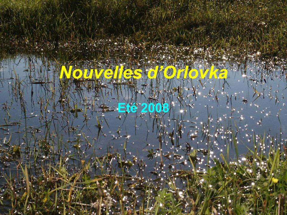 Nouvelles dOrlovka Eté 2008