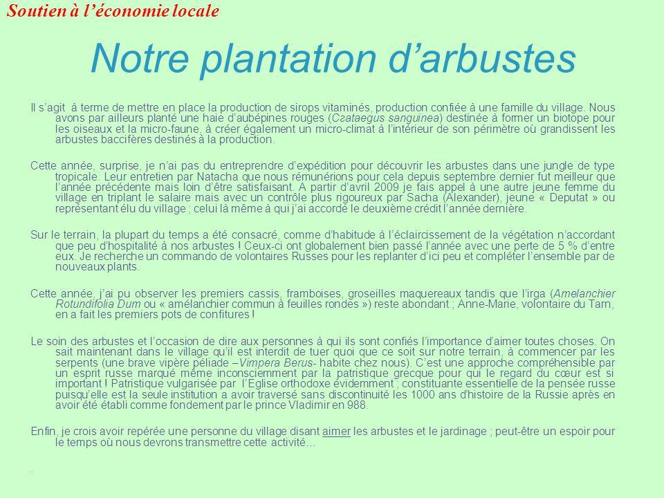 Notre plantation darbustes Il sagit à terme de mettre en place la production de sirops vitaminés, production confiée à une famille du village. Nous av