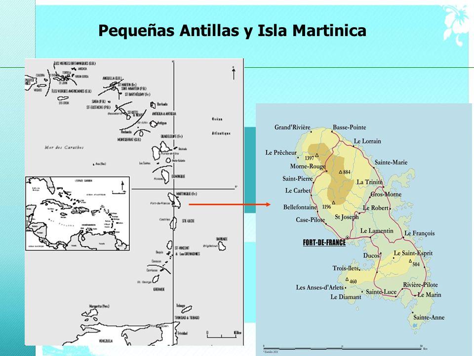 Pequeñas Antillas y Isla Martinica 2