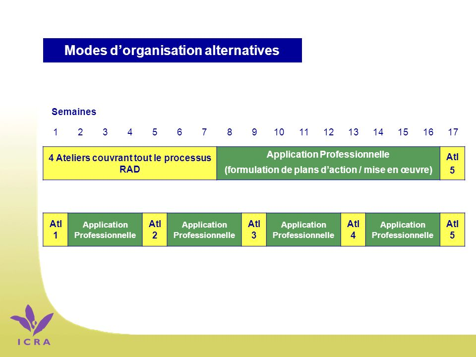 4 Ateliers couvrant tout le processus RAD Application Professionnelle (formulation de plans daction / mise en œuvre) Atl 5 Atl 1 Application Professio