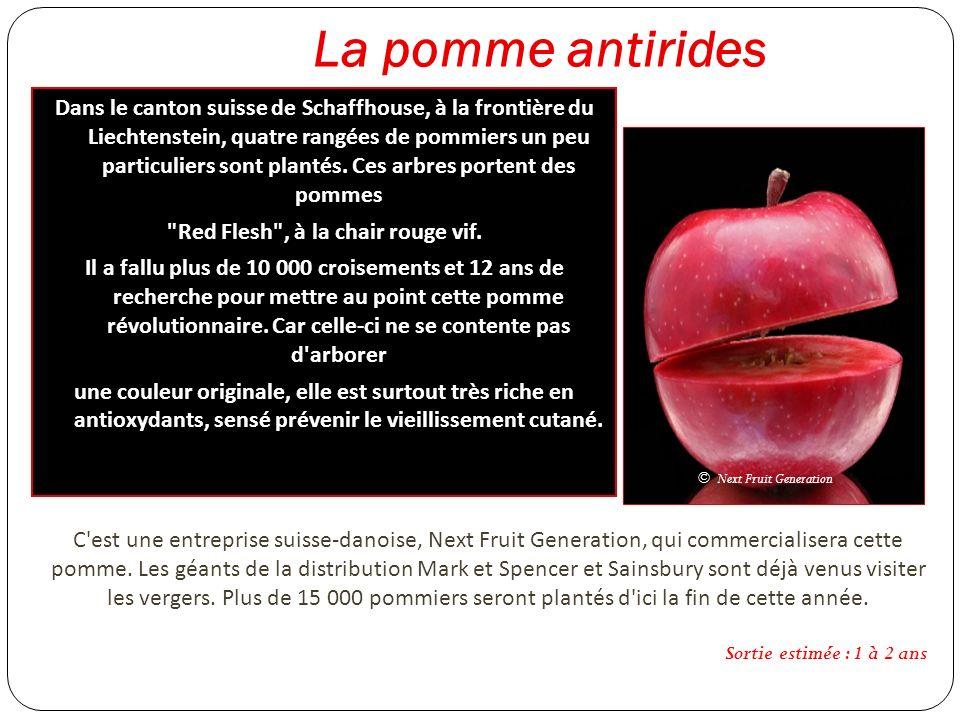 La pomme antirides Dans le canton suisse de Schaffhouse, à la frontière du Liechtenstein, quatre rangées de pommiers un peu particuliers sont plantés.