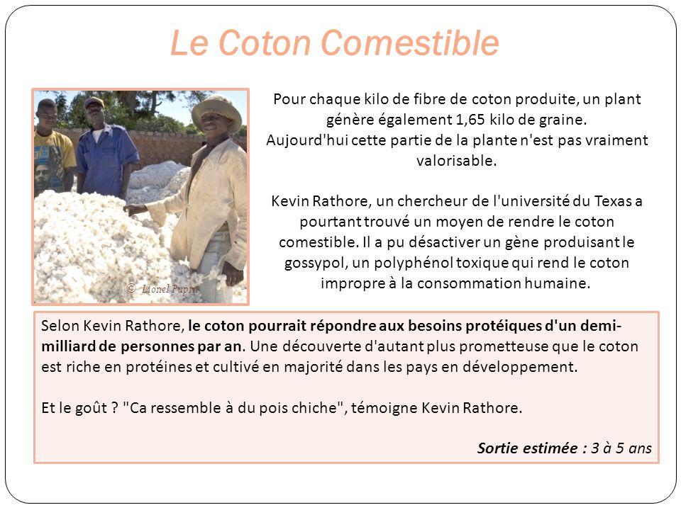 Le Coton Comestible Pour chaque kilo de fibre de coton produite, un plant génère également 1,65 kilo de graine. Aujourd'hui cette partie de la plante