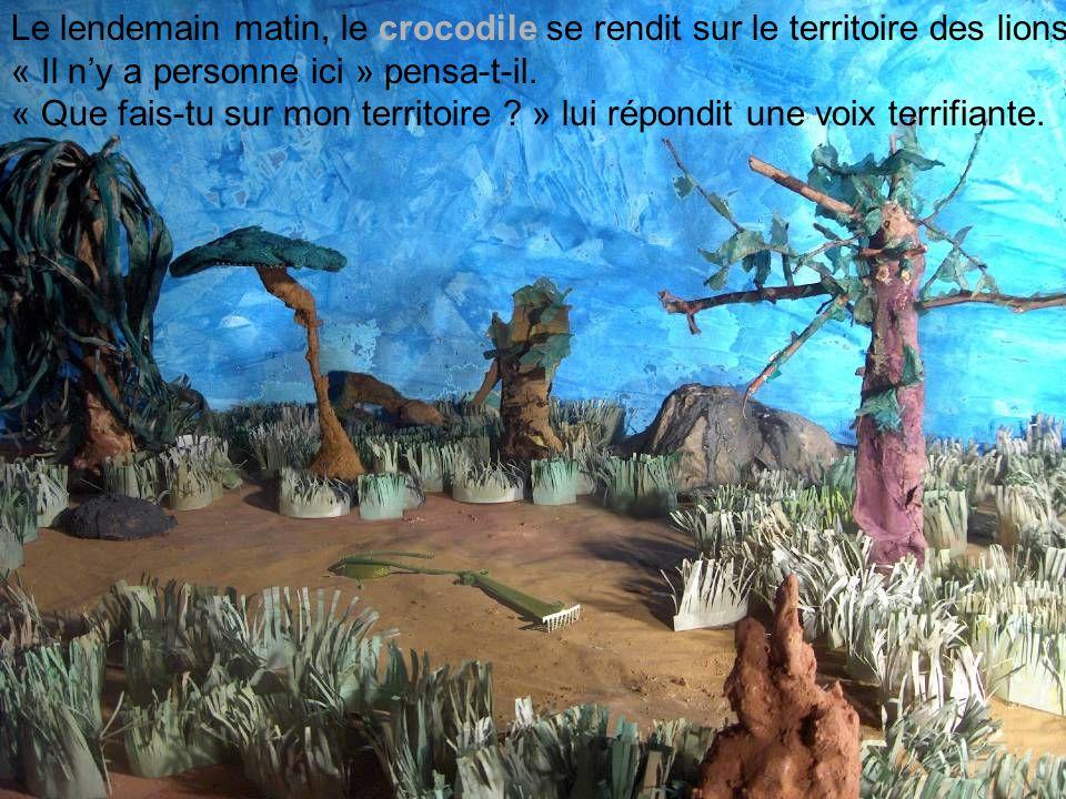 Le lendemain matin, le crocodile se rendit sur le territoire des lions. « Il ny a personne ici » pensa-t-il. « Que fais-tu sur mon territoire ? » lui