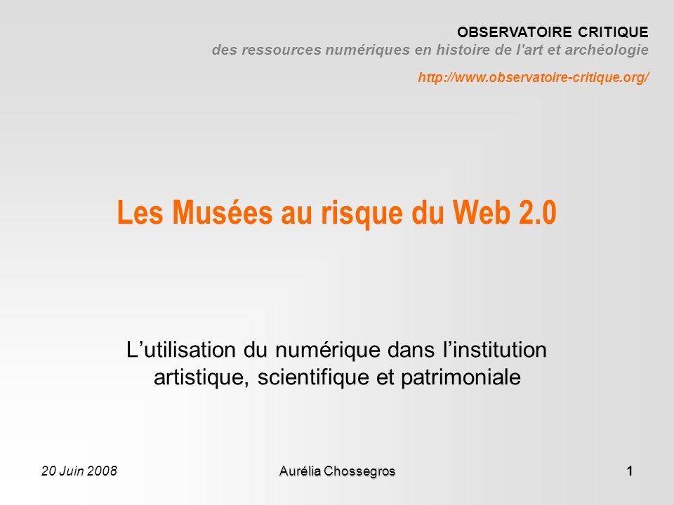 20 Juin 2008Aurélia Chossegros2 Le risque ou la nécessité .
