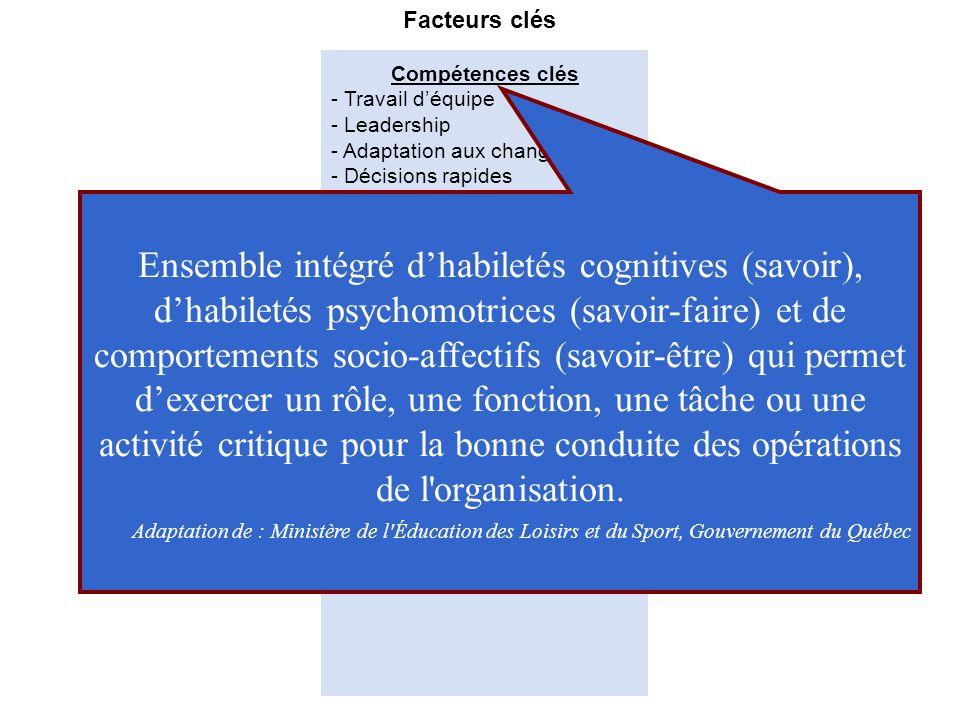 Acteurs clés Compétences clés Modes de développement Facteurs clés - Travail déquipe - Leadership - Adaptation aux changements - Décisions rapides Cap