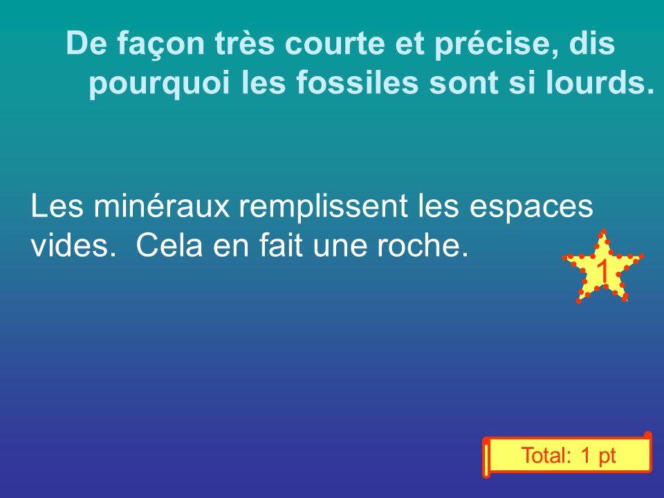 De façon très courte et précise, dis pourquoi les fossiles sont si lourds.